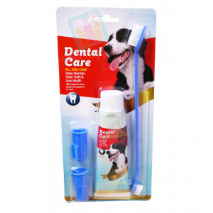 Dental Care Toothpaste w/ Toothbrush &am...