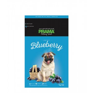 Prama Dog Treats, Blueberry 70g...
