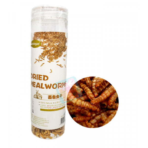 Sundog Dried Mealworms 50 grams