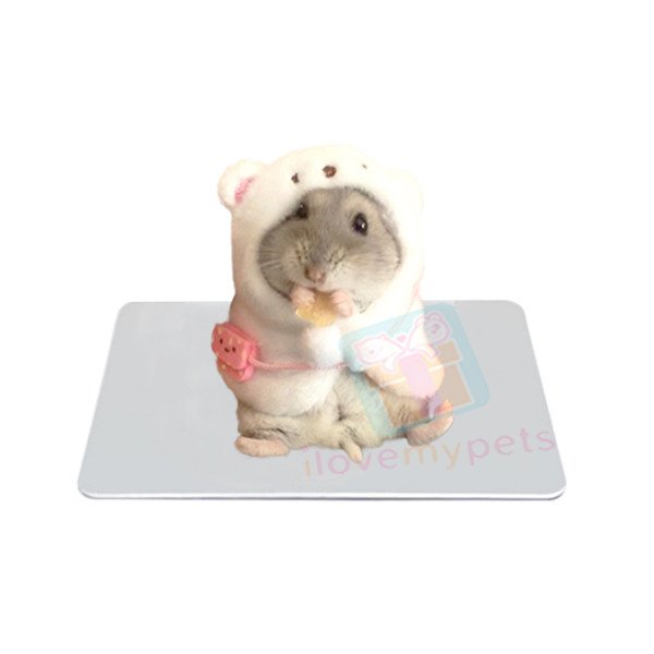 Happy Pets Cooling Plate
