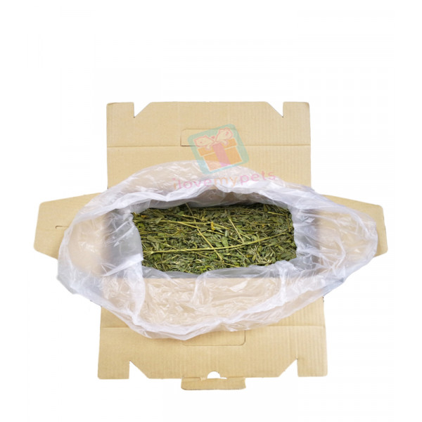 Sundog Natural Premium Alfalfa Hay 1 kg (For rabbit less than 1 year old and for picky eater)