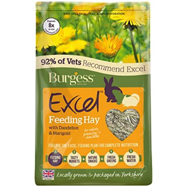 Burgess Excel Feeding Hay Dandelion &...