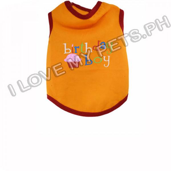 Birthday Boy T-Shirt 100% Cotton (Orange...