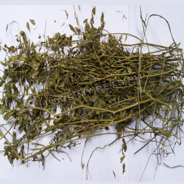 Kerry Natural Clover Hay 500 grams (For Picky Eaters)