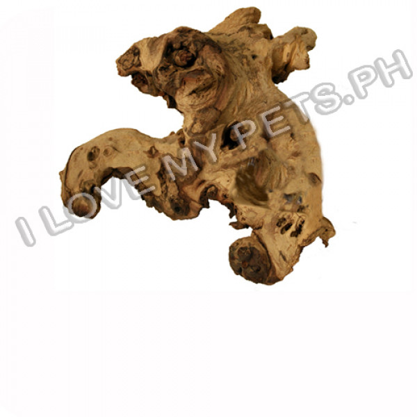 Zoomed African Mopani Wood Small